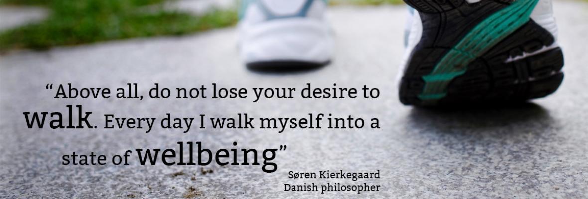 The Walking Challenge 2017