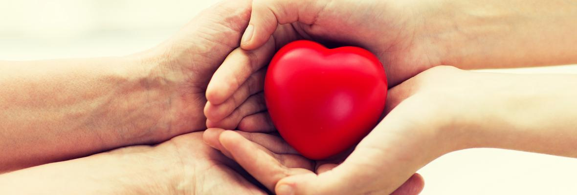 A young carers hands holding a heart